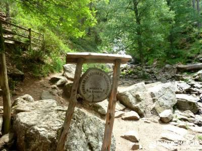 Cerro Perdiguera-Sierra Morcuera-Canencia; agencias de excursiones;puente del pilar boca del asno